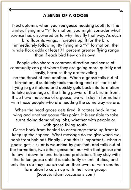 cerita bahasa inggris tentang binatang