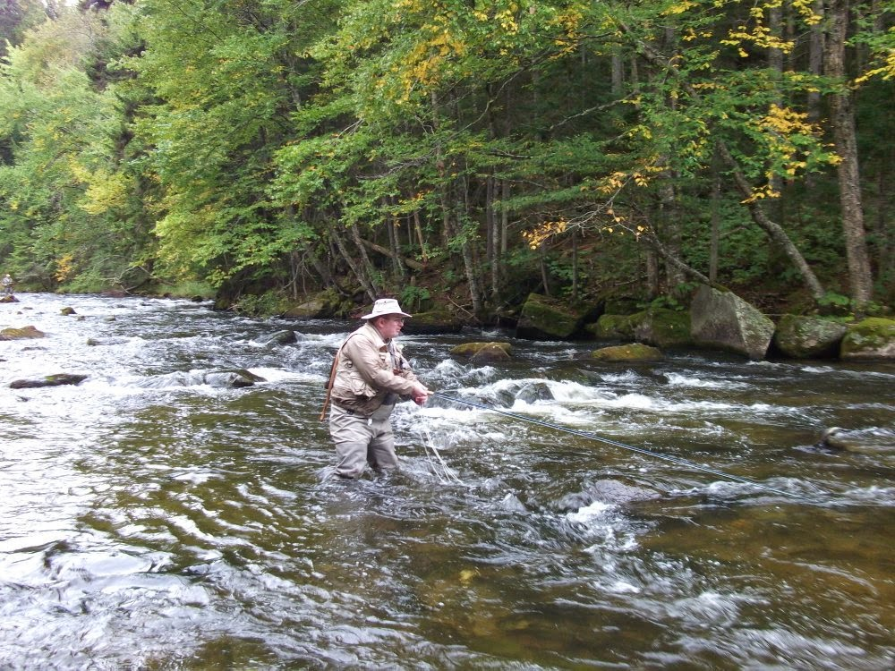First cast fly fishing fly fishing new hampshire for Fly fishing news