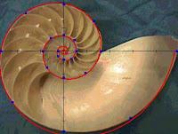 Usando o sistema de Fibonacci para ganhar na Dupla-Sena