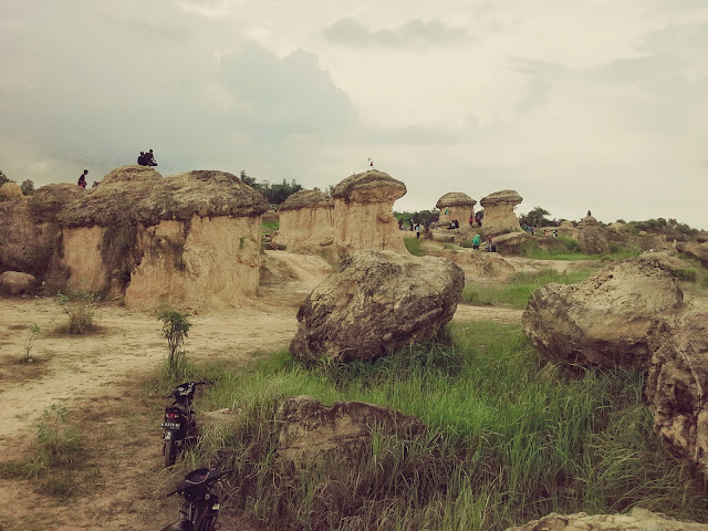 wisata baru bukit jamur di Kabupaten Gresik