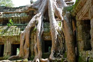 Ta Prohm Tomb Rader Cambodia