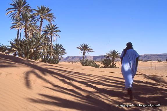Marocco, oasi