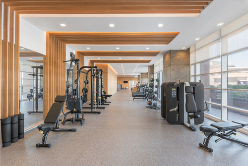 Discovery Primea 37 Degree Gym