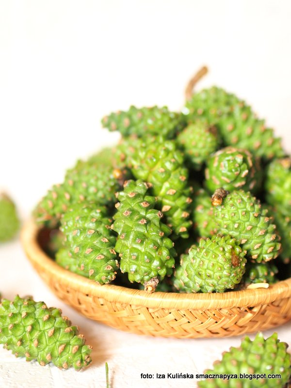 zielone szyszki, szyszunia, sosna zwyczajna, z drzewa, las sosnowy, co zrobic z szyszek, przetwory z szyszek, domowa apteczka, dzem szyszkowy