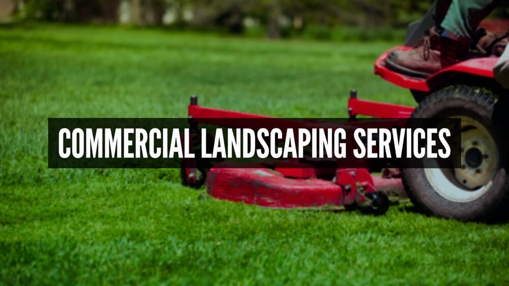 - Professional Residential And Commercial Landscaping Services