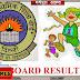 सीबीएसई दशवीं के परिणाम में मधेपुरा के निजी स्कूलों का जलवा