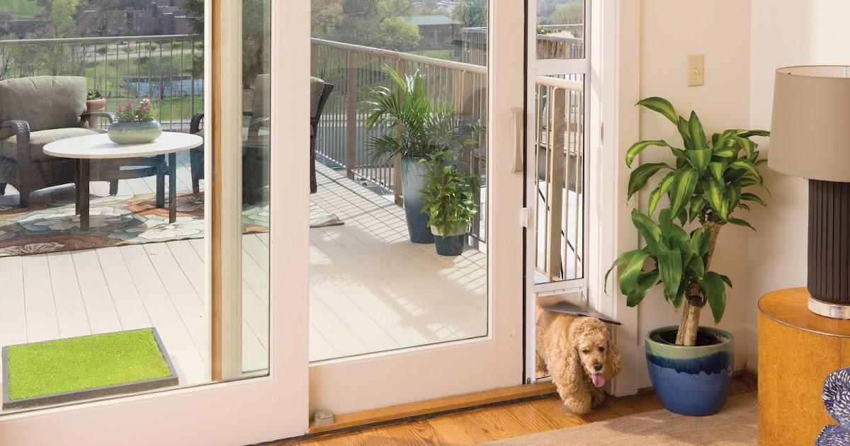PetSafe Sliding Gl Pet Door Giveaway | Pawsitively Pets on beautiful home exterior design, h&m home design, house design,