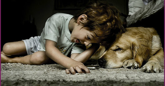Authentic Parenting: Can a Pet Help an Autistic Child?