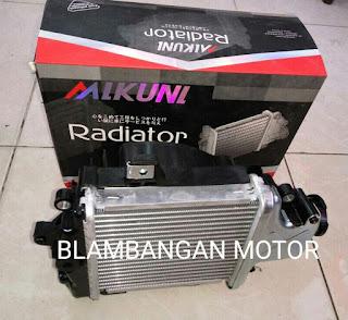 radiator Vario FI
