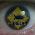 Resumen Creación de Exploits por CorelanC0d3r (PDF)
