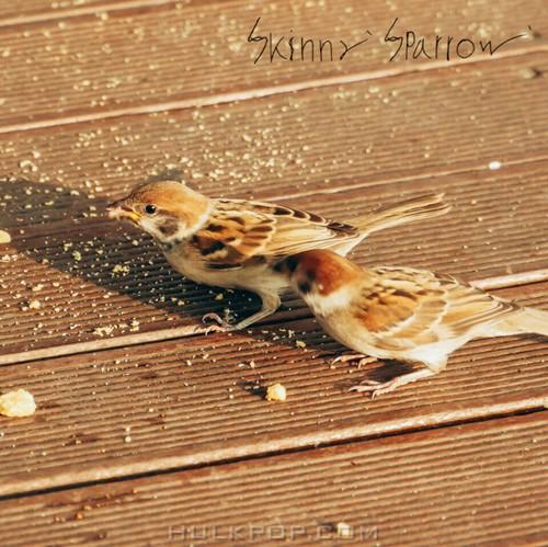 Skinny Sparrow – 달려간다 – Single