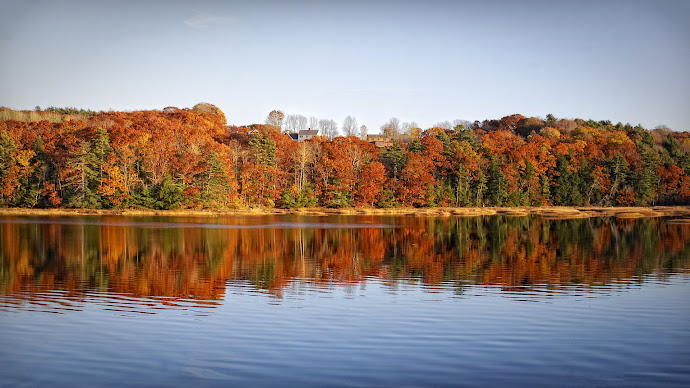 Wallpaper: Indian Summer in New England
