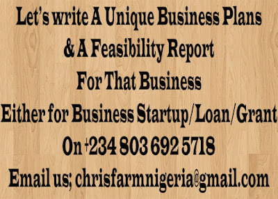Business Management, Business Development, Business Plans & Feasibility Reports