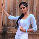 Rangam Movie Actress Karthika Latest Stills