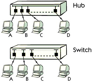 Which componemt are used in (LAN) local area network ?