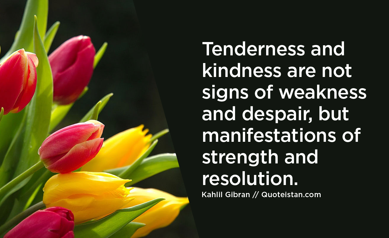 Tenderness and kindness are not signs of weakness and despair, but manifestations of strength and resolution.