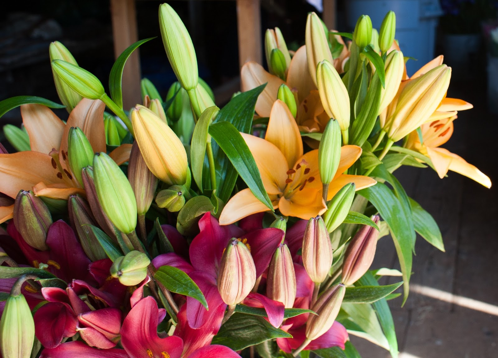 Why Royal Lilies Are The Perfect Flowers For Mothers Day Flower Talk