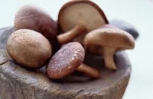 manfaat-jamur-shitake-bagi-kesehatan,www.healthnote25.com