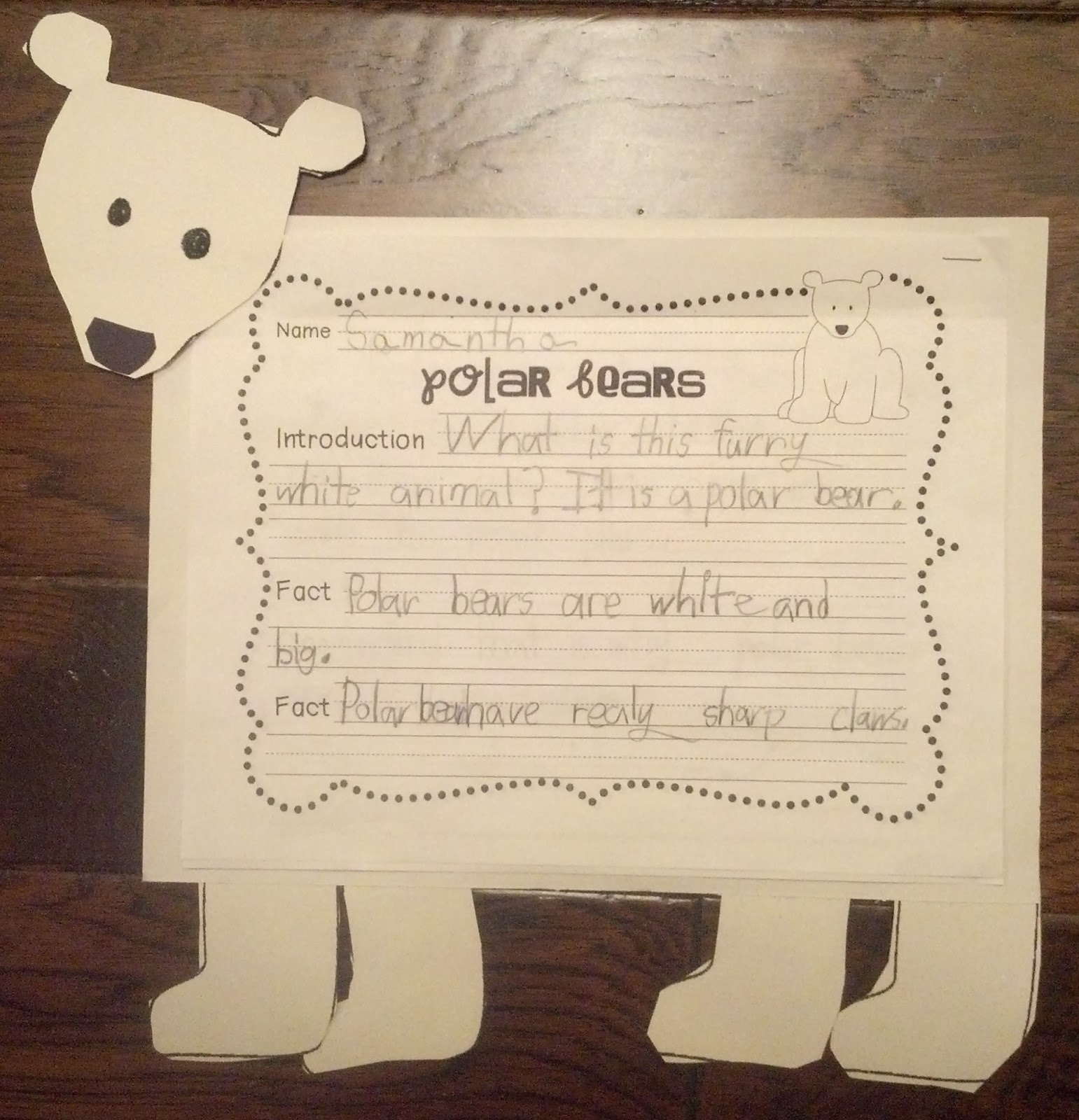Sailing Through 1st Grade Polar Bears