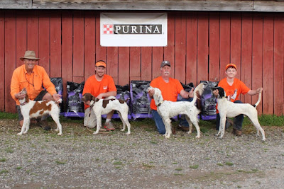 nstra, bird dogs bird hunting