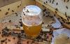 Ταΐζετε τα μελίσσια ζάχαρες & βιομηχανοποιημένα σκουπίδια: Σίγουρα θα πουλάτε το μέλι ως αγνό...
