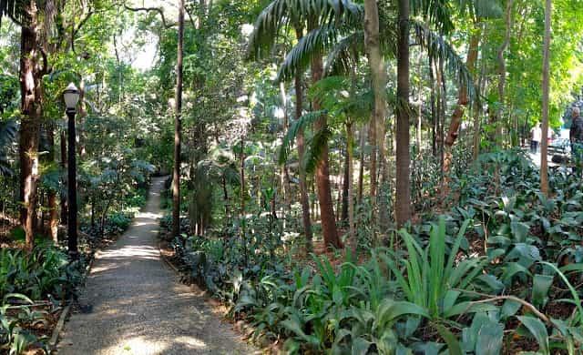 Parque Trianon em São Paulo