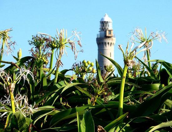 Tsunoshima Lighthouse.