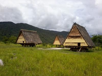 Contoh Desain Rumah Adat Sulawesi Tengah