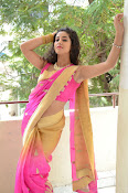pavani new photos in saree-thumbnail-27