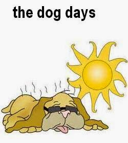 Dog Days Of Summer Idiom Meaning
