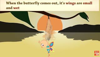 media pembelajaran siklus hidup kupu-kupu