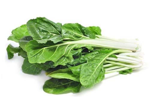 نبات السلق يعزز صحة القلب، يقوي العظام ويعالج فقر الدم
