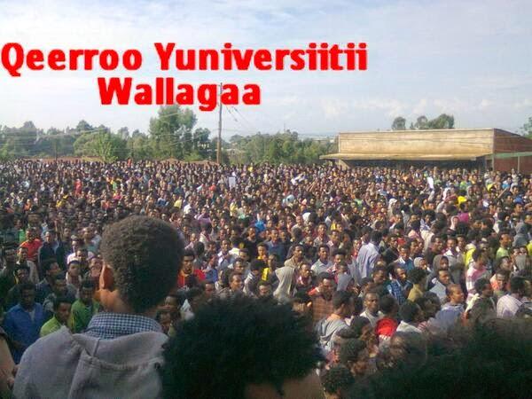 Oromo Press: April 2014