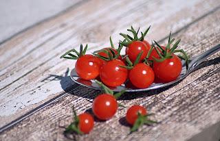 http://tomatprat.blogspot.no/2015/07/sweet-pea-currant-en-mini-cherrytomat.html