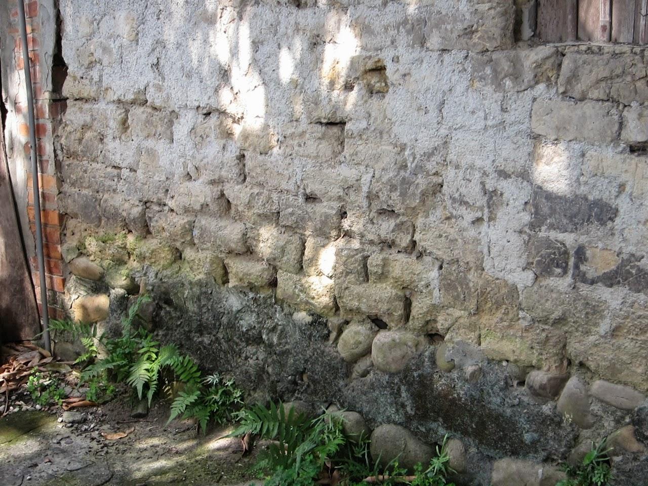 輕行散記: 泰山義學坑步道