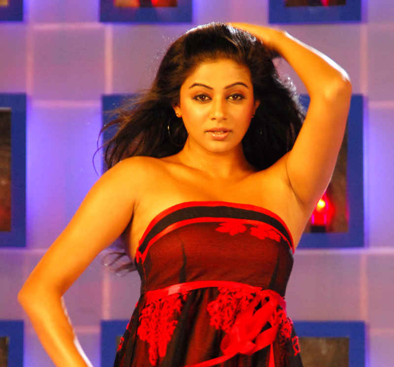 priyamani some of the notable hot and spicy stills from