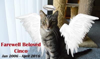 Farewell Beloved Cinco badge