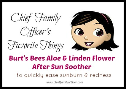 Burt's Bees After Sun Soother - Chief Family Officer's Favorite Things
