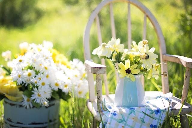 fiori di campo bella giornata