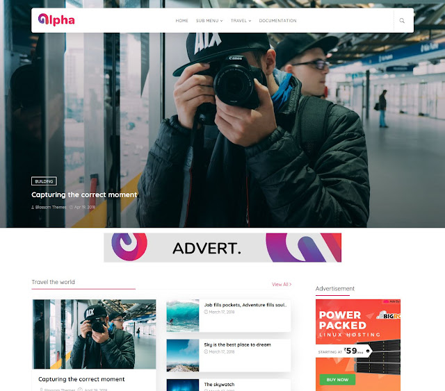 Download Alpha Blogger Theme Template