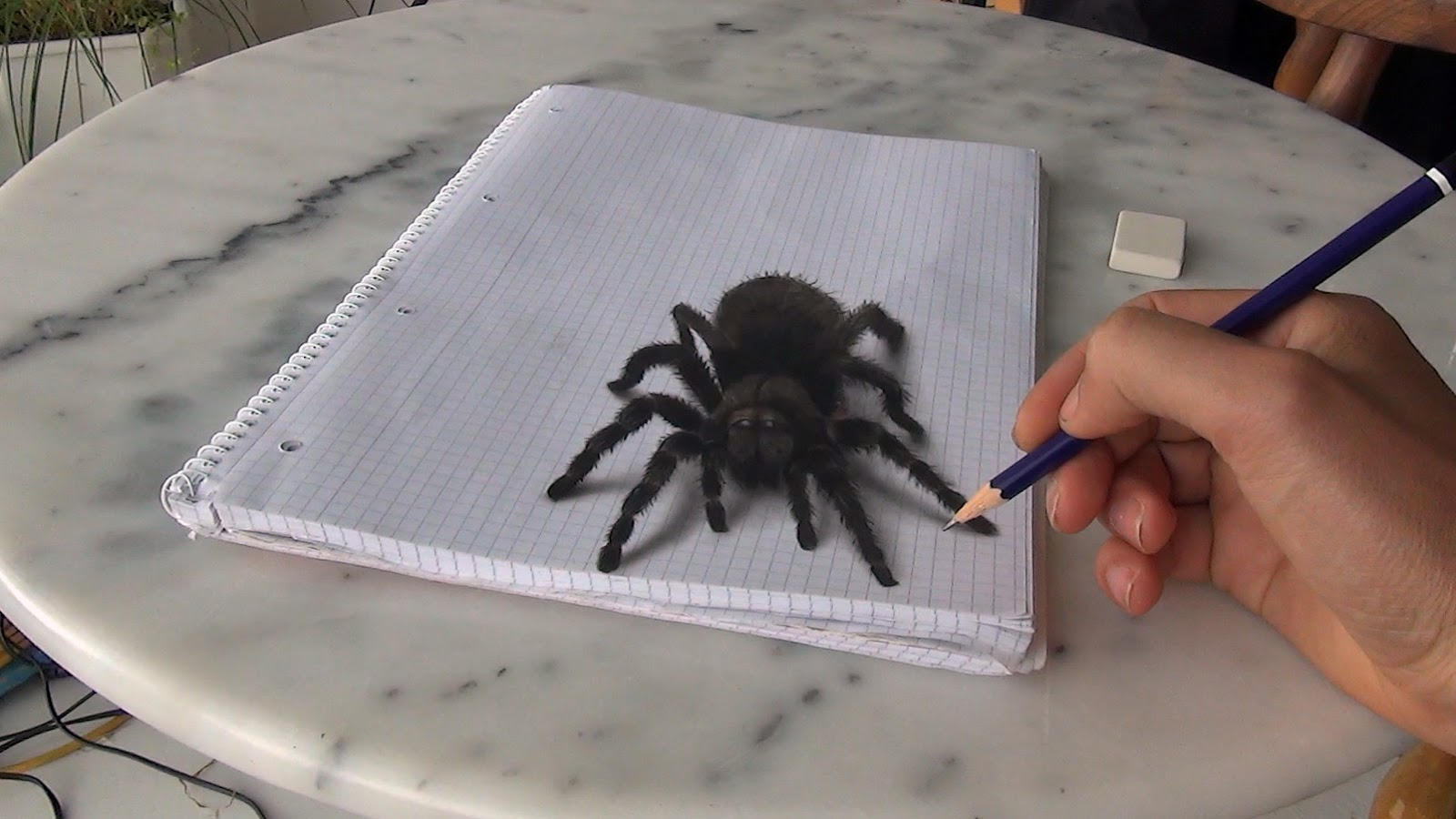 11-Spider-Tarantula-Stefan-Pabst-3D-Optical-Illusions-Drawings-and-Paintings-www-designstack-co