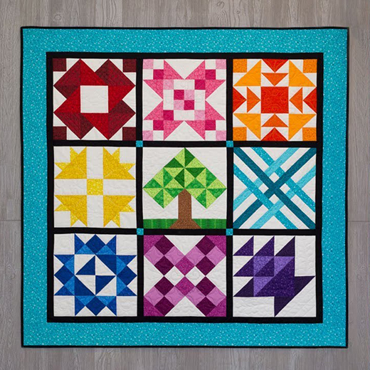Intermediate Blocks Quilt Series designed by Jennifer Bosworth of Shabby Fabrics