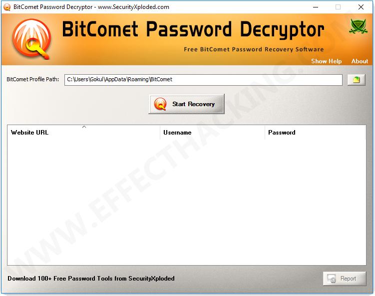 BitComet Password Decryptor Main Window