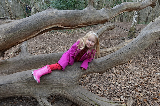 A girl in pink climbing over a fallen over tree