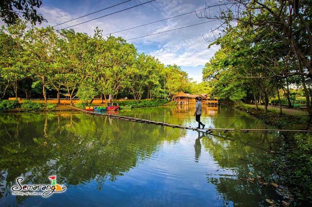 foto kebun binatang mangkang semarang