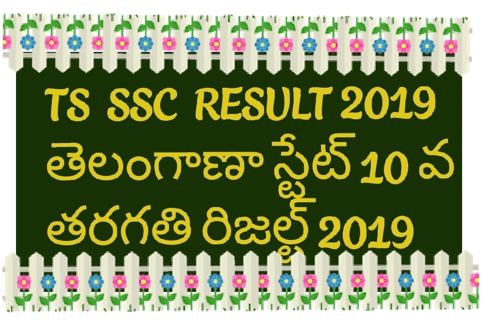 TS SSC result 2019 - APEdu