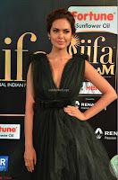 Esha Gupta in a Deep Neck Sleeveless Dark Green Gown at IIFA Utsavam Awards 2017     24.JPG