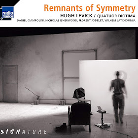 Hugh Levick - Remnants of Symmetry