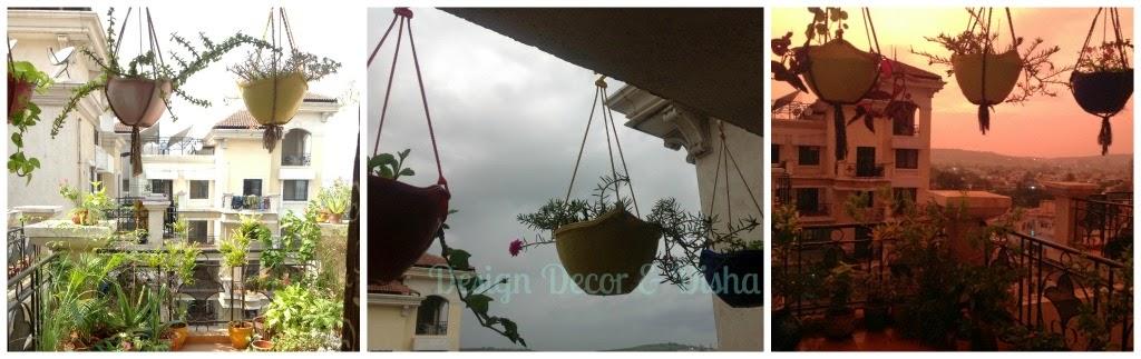 Money Plant Decor Indian Hanging