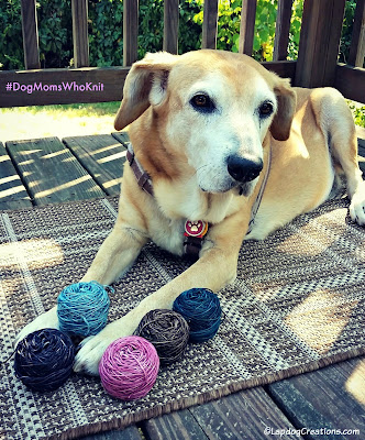 senior hound dog with yarn